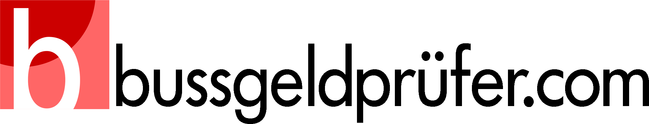 Bussgeldprüfer Logo